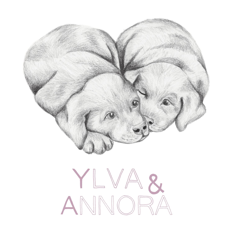 4Ylva-Annora-voorkant